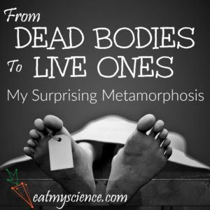 I always dreamed of investigating dead bodies, but now I teach you about your live one